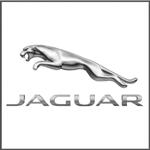 Jaguar-Logo-335x335